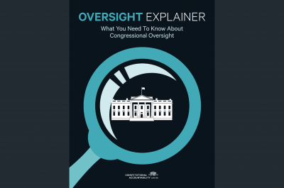 Lead Magnet - Oversight Explainer